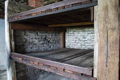 Poland Auschwitz-Birkenau  (#2364)