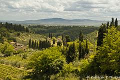 San Gimignano view Tuscany 052614-002