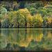 Lac de Coiselet (Jura)