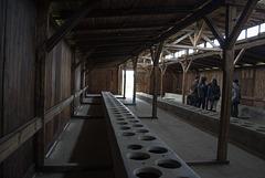 Poland Auschwitz-Birkenau  (#2371)
