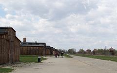 Poland Auschwitz-Birkenau  (#2372)