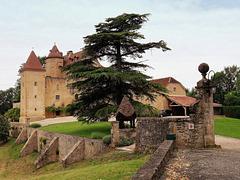 Il Castello di Arricau-Bordes