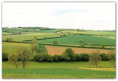 Pays de Bray