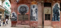 Havana walls