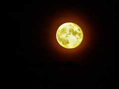 The Harvest Moon on the Equinox.