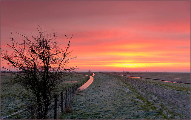 Fire in the Sky: Sunrise in the Eempolder... 3