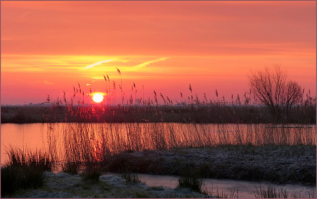 Here he comes: Sunrise in the Eempolder... 2
