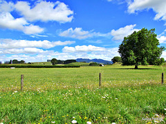 Farm View,