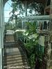 Gamboa Resort Lower Interior Gardens