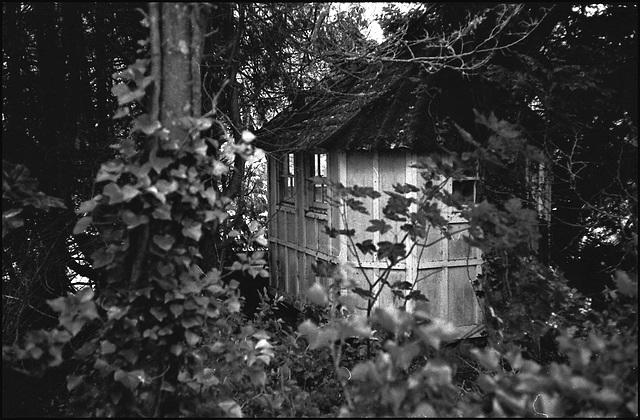 Shed, Dorset.