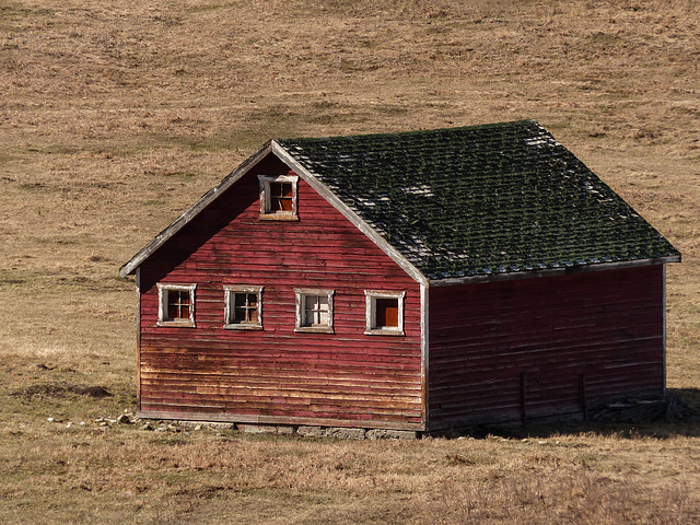 Little red barn with green roof
