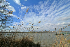 La Garonne, vers Quinsac (Gironde)...