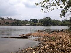 Le calme d'une rive nicaraguayenne