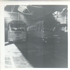 Yelloway 4643 DK and a Grey Cars coach - Summer 1965