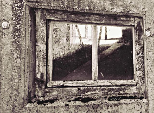 Durchblick oder Einblick in den Stall