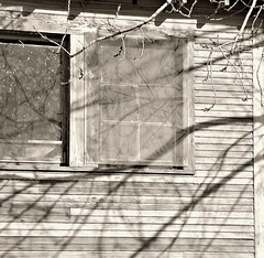 Screen and shadows
