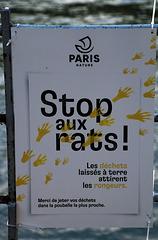 Des rats dans Paris , encore une information fallacieuse pour que l'on jette nos déchets alimentaires dans les poubelles et ainsi économiser du personnel d'entretien .