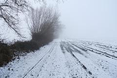 -weg-04604-co-21-01-18