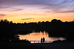 A moment to share ~ Nene Park