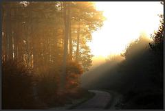 lever du soleil d' hiver ....