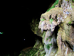 Höhlenwächter