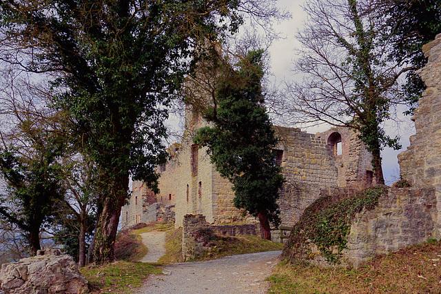 Burgruine Homburg - Castle Ruin Homburg - Les ruines du château Homburg