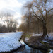 Berlin. Winter am Malchower See. 201502