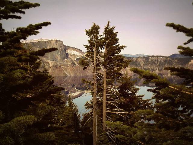 Mountain, lake, spruce trees