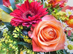 Blüten. ©UdoSm