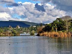 View Across Lake.