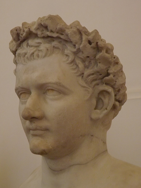 Detail of the Bust of the Emperor Domitian in the Naples Archaeological Museum, July 2012