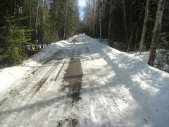 Spring, Alaskan highway