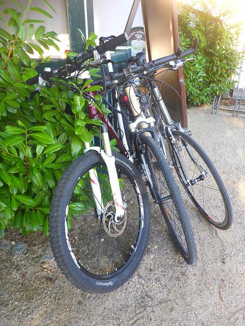 Fahrradreifen - 3 mal
