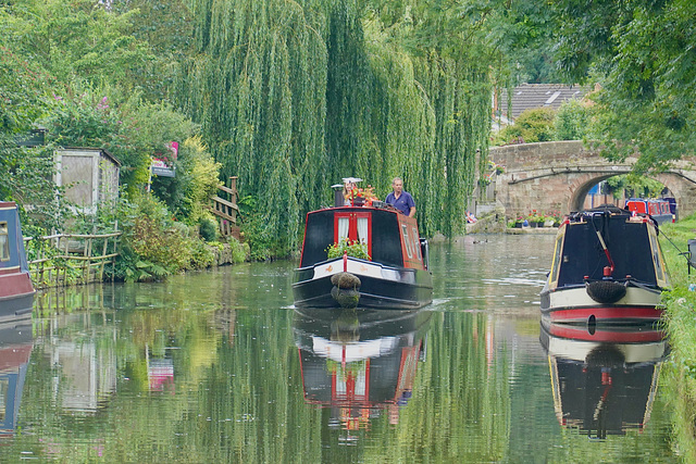 Shropshire Union canal reflections