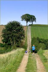Running through the Fields...