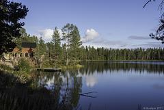 Pinetree Lodge am Saarijärvi (© Buelipix)