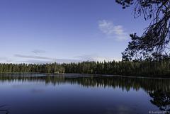 in der Nähe von Särkimukka (© Buelipix)