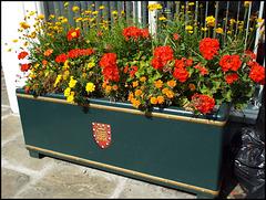 Wallingford flower trough