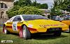 Lotus Esprit - TGT 25