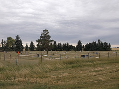 Prés funéraires / Funerary fields