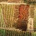Bad Honningen- Vineyard