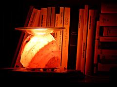 dans la lumière des livres