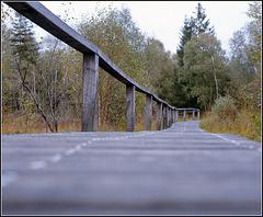 Mecklenbruch Holzweg