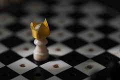 scacco matto al Covid