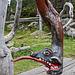 Drachenschaukel - Dragon Swing