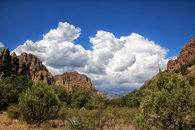 Sunny Flat Campground, The Chiricahua Mountains