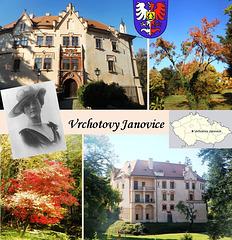 Kastelo Vrchotovy Janovice