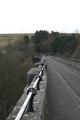 On The Lambley Viaduct