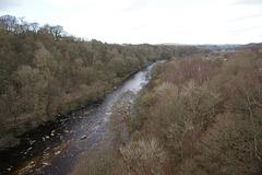 River South Tyne At Lambley