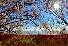 ... azzurro del cielo, azzurro del mare ...